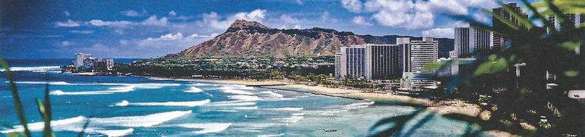 Go Hawaiian!